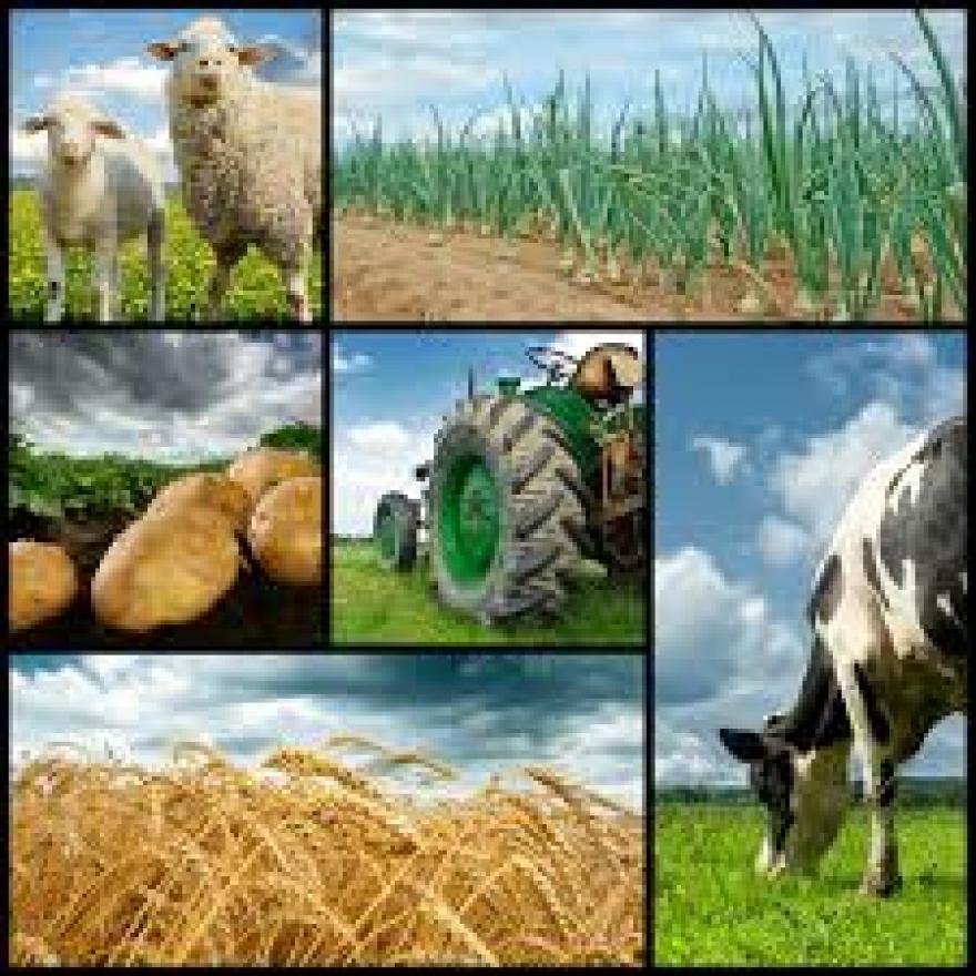 25. rujna - Radionica - obnova poljoprivrednog zemljišta i proizvodnog potencijala narušenog elementarnim nepogodama, nepovoljnim klimatskim prilikama i katastrofalnim događajima