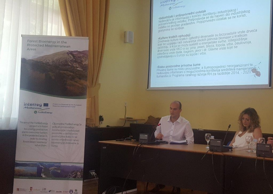 Održan prvi tehnički panel u sklopu projekta ForBioEnergy